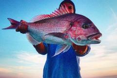 1_pesca-in-mare-palinuro-14