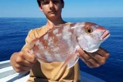 pesca-in-mare-palinuro-12