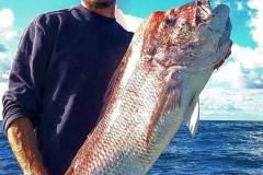 pesca-in-mare-palinuro-7